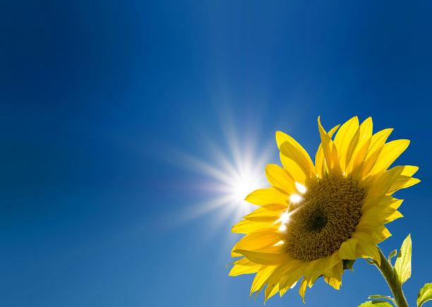 Solaranlage Sonnenenergie